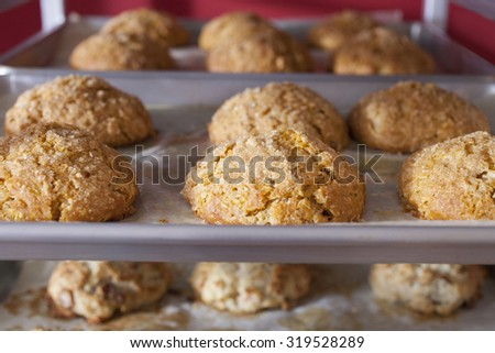 Scones Cooling on Rack - stock photo
