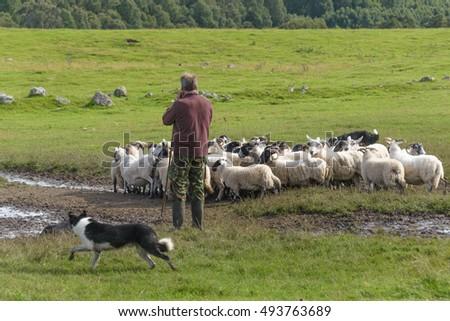 Dating farmers scotland