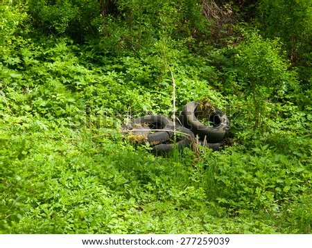 Scrap tyres in the nature, illegal waste disposal - stock photo