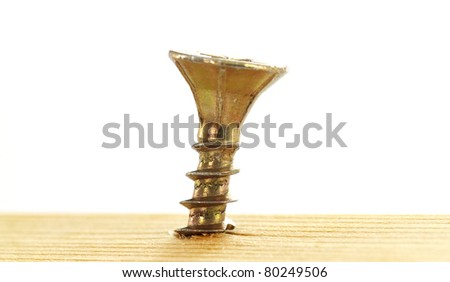 screw in a piece of wood - stock photo