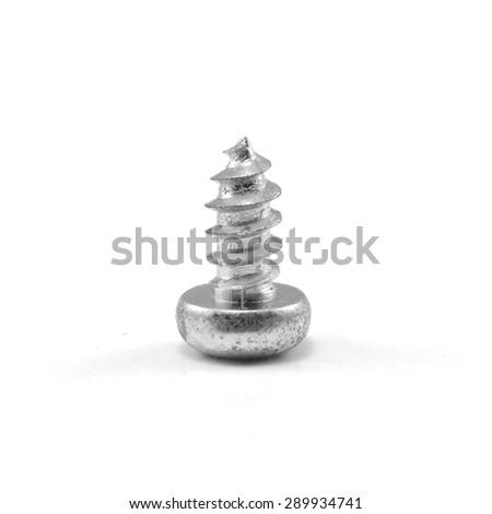 screw on a white background - stock photo