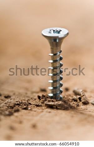 screw screwed in wood with wood shavings - stock photo