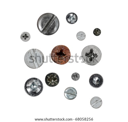 Screws isolated on white - stock photo