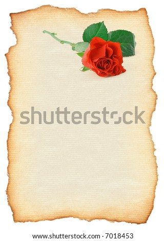 scroll with rose motif isolated on pure white background, edges are very rough and frayed, photo inside is my property - stock photo