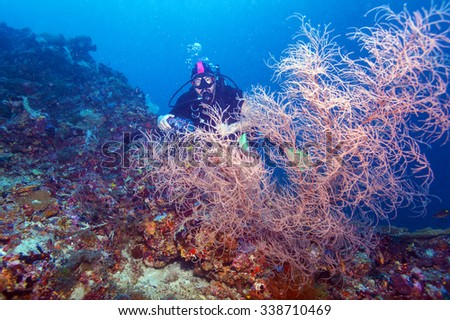 Scuba Diver at Bottom of Coral Reef - stock photo