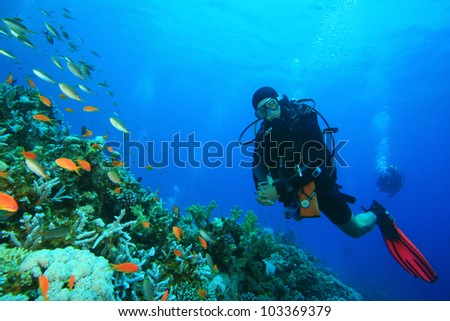 Scuba Diver, Coral Reef and Tropical Fish in the Red Sea - stock photo
