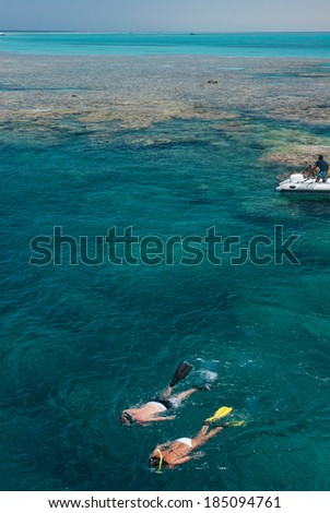 Scuba diver exploring the coral reefs if the red sea in Egypt - stock photo