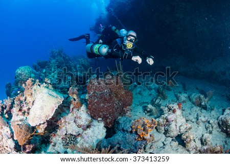 SCUBA diver in a technical sidemount cofiguration on a tropical coral reef