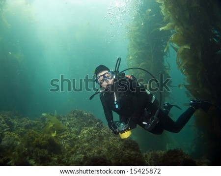 Scuba Diver looking into the camera in Catalina - stock photo