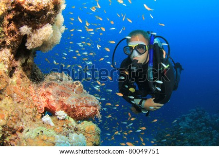 Scuba Diver observes a Scorpionfish on a coral reef in the Red Sea - stock photo