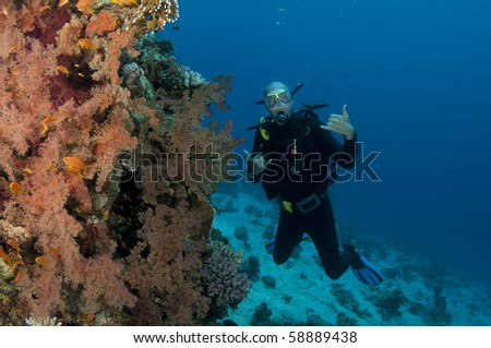 scuba diver on colorfull reef