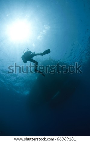 scuba diver silhouetted