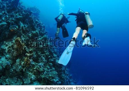 scuba diver swim away from camera - stock photo