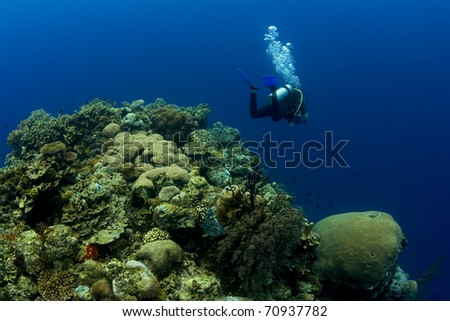 SCUBA diver swimming over the crest of a coral reef pinnacle while exhaling bubbles. Taken in the Wakatobi, Indonesia.