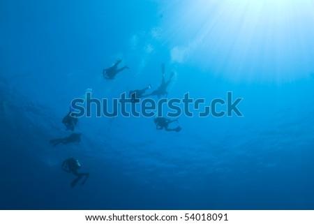 Scuba divers descending into the blue. Near Garden, Sharm el Sheikh, Red Sea, Egypt. - stock photo