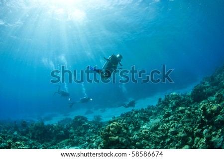 Scuba divers in the red sea - stock photo