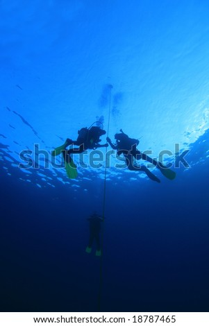 Scuba divers training