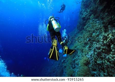 Scuba diving in the ocean - stock photo