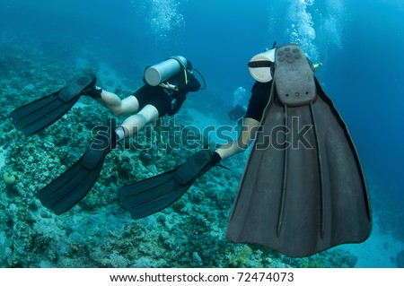 Scuba diving in the ocean with clear blue water - stock photo
