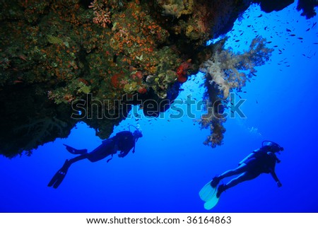 Scuba Diving in the Red Sea - stock photo