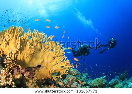 Scuba diving underwater over ocean coral reef - stock photo