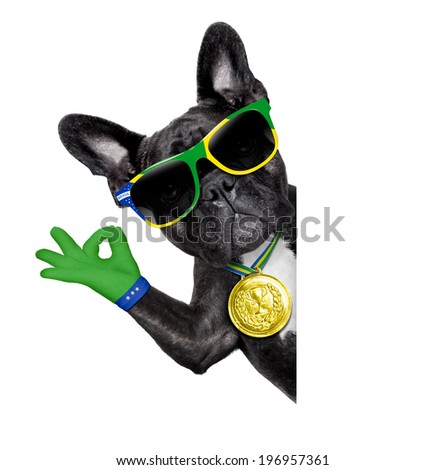 scuba dog with snorkel and goggles holding white blank banner or placard - stock photo