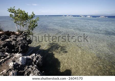 Sea activities. - stock photo