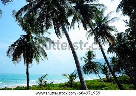 Sea and coconut palm trees - Beautiful landscape - Beach at Khanom ,Nakhon Si Thammarat Thailand ( Gulf of Thailand )