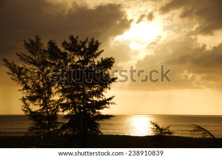 Sea and Last Rays Under Trees - stock photo