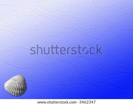 Sea background with a shell and shells texture