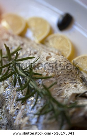 Sea bass fish fillet with rosemary