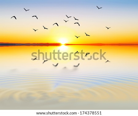 Sea Bright and colorful - stock photo