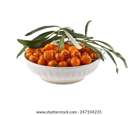 sea-buckthorn on a white background - stock photo