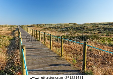 Sea coast dune with wooden walkway in early summer, north of Portugal - stock photo