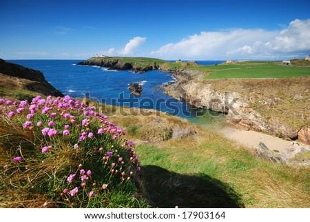 sea-coast of Ireland - stock photo