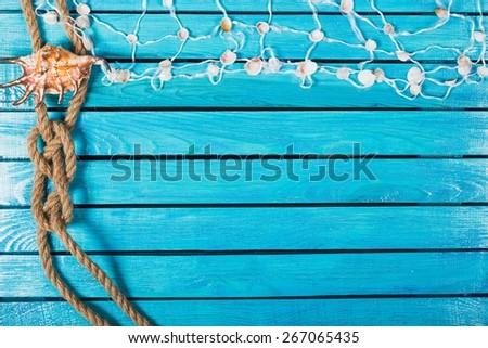 Sea, concept, conch. - stock photo