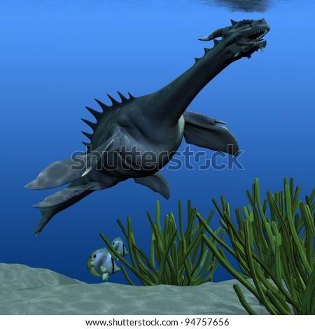 Sea Dragon 02 - A sea dragon swims to the surface for a breath of air along an ocean reef. - stock photo