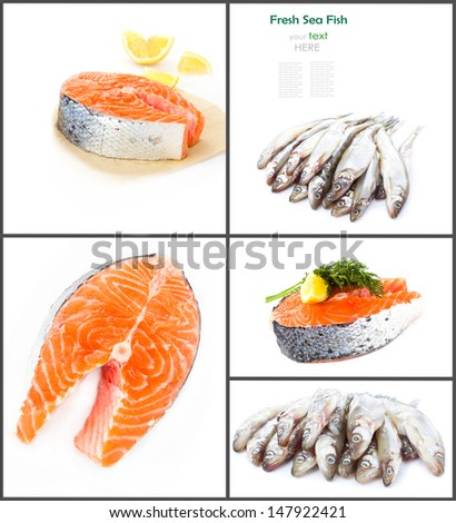 Sea food collage with raw fish and trout  steaks  isolated on white background  - stock photo