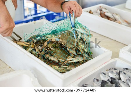 Sea food market, freshly caught Blue crabs in a mesh bag ready for sale - stock photo