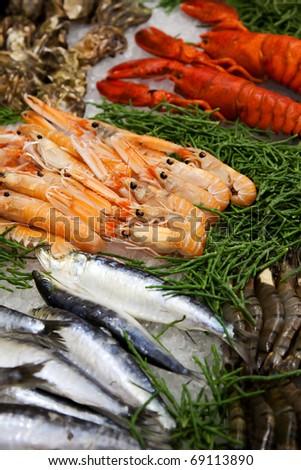 sea food table - stock photo