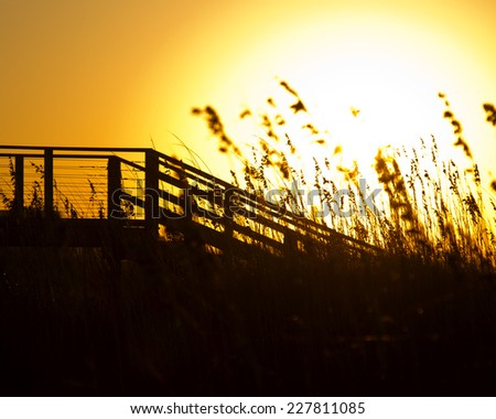 Sea Grass and Broadwalk in the morning light of Southport North Carolina - stock photo