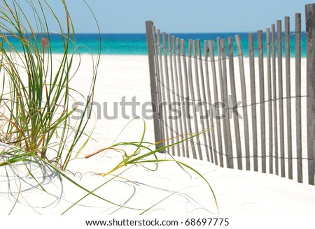 Sea grass and fence on Pensacola Beach - stock photo