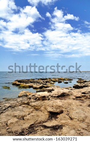 sea landscape summer
