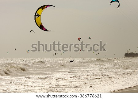 sea landscape with kite-surfers