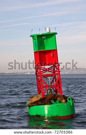 Sea lions on a navigational buoy in the San Francisco Bay, California. - stock photo