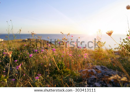 Sea of Azov coastline (Crimea republic) - stock photo