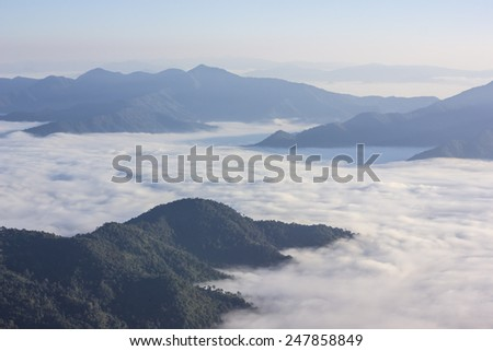 Sea of mist at Doi Pha Tang, Chiangrai , Thailand