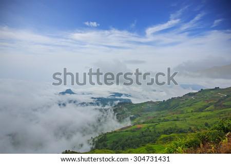 sea of mist in phutubberk thailand - stock photo
