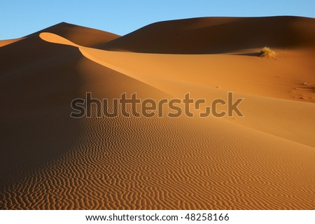 Sea of sand - stock photo
