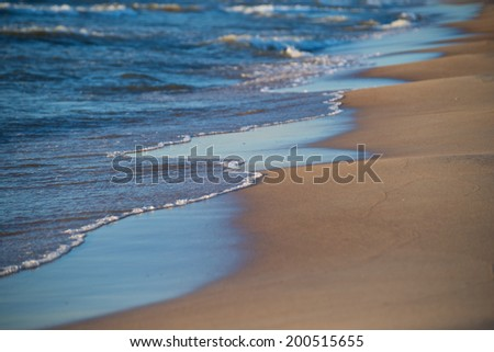 Sea ornaments  - stock photo